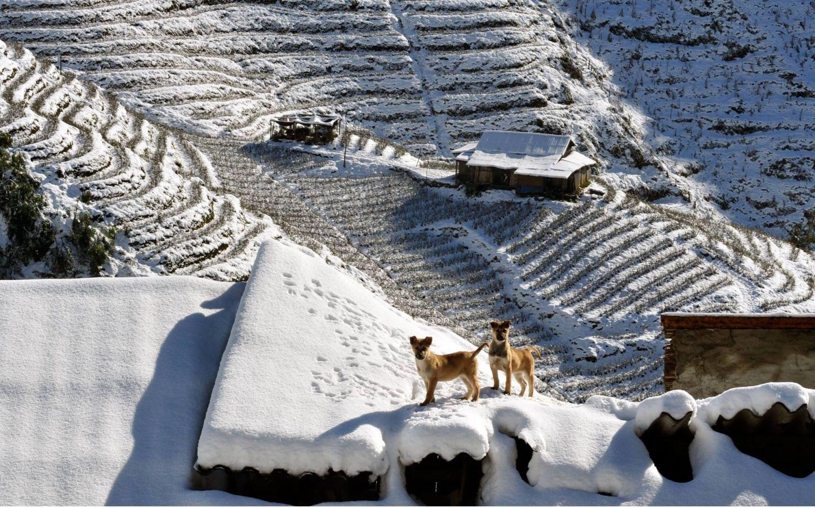 du lịch sapa – achautravel.com.vn - ảnh 3.